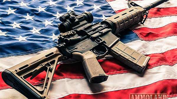 Modern-Sporting-Rifle-AR15-Patriotic-Flag.jpg