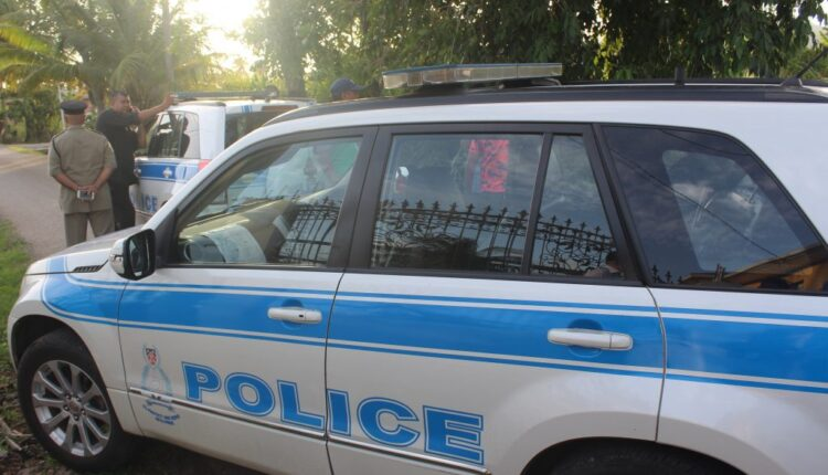 Police-car_2537718_-e1586287780867-1024×721-1.jpg