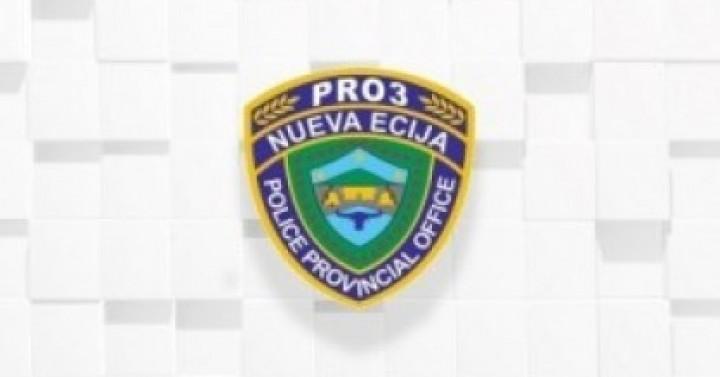 n-ecija-police-curated.jpg